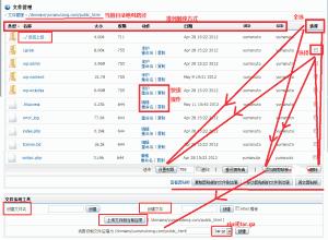 directadmin控制面板使用技巧之文件管理器