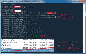 献给新手-VPS centos一键安装lnmp图文教程在线压缩篇